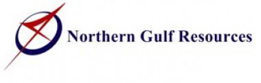 เจ้าหน้าที่บัญชี Northern Gulf Resources Co., Ltd.