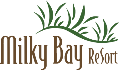 Director of sale MIKKY BAY RESORT